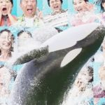 鴨川シーワールド Kamogawa Sea World(official)〈想像を超える夏 その① ~衝撃の体験!サマースプラッシュ~〉