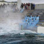 シャチのラビーが激励 鴨川シーワールドの入社式 2016年4月4日