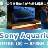 14トンの大型水槽が登場 「Sony Aquarium」 2016年7月15日~8月28日開催について ソニービルにて