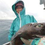 駿河湾の底はえ縄漁師(その1) 深海の魚に恋して ヨロイザメ 毎日新聞 2015年10月18日