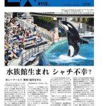 水族館生まれ シャチは不幸? アメリカ シーワールド、繁殖・飼育中止 SankeiBiz 2016年3月19日