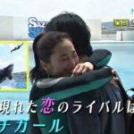 次回シャチ出んのか!? ドラマ「水族館ガール」  第5回「ライバルはシャチガール」 2016年7月29日夜10時NHK