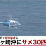 サメ30匹 茅ヶ崎、鎌倉7か所で遊泳禁止2015年8月14日(金)17時45分