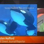 アメリカ シーワールド シャチの繁殖とショーを中止へ ウォール・ストリート・ジャーナルより 2016年3月18日