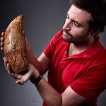 タケノコ!? 巨大すぎる古代肉食クジラの歯が発見される