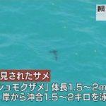 静岡でもサメ目撃 2海水浴場で遊泳禁止 8月10日 18時07分