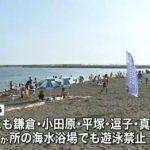 サメ30匹以上…湘南9か所で遊泳禁止8月15日AM1時15分