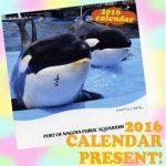 2016年名古屋港水族館オリジナル卓上カレンダー 各日先着100名様にプレゼント!期間 2015年12月23~25日, 2016年1月1~3日 午前9時30分~