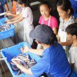 水族館で高度なトレーナーの職業体験「ジュニアトレーナー」参加者募集(有料)について 小5・6年生対象 鴨川シーワールド