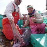 推定約2.5mの巨大ミツクリザメ捕獲 駿河湾 静岡 2016年1月21日 静岡朝日テレビ サタ☆ハピしずおかにて、2016年1月30日午前9:30~放送予定