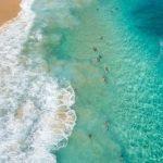 サメに襲われサーファー重傷、被害は今年5件目 米ハワイ 2015.10.11