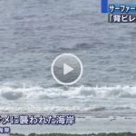 動画 体長3メートル サメに襲われ男性がケガ 沖縄 糸満 大度海岸沖 2015年10月26日 11時58分