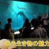 海の生物、生態を紹介 アクアワールド茨城県大洗水族館 茨城高・中生が発表 2016年2月18日 茨城新聞より