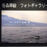 海洋生物調査員・自然写真家笹森琴絵さんの写真展 登別マリンパークニクス