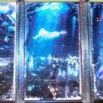シャチのリンちゃんがモデル!? 愛知 展望台で幻想的な夜景 名古屋テレビ塔  朝日新聞 2015年11月27日