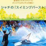 シャチの幅1.5mの巨大な尾ビレで観客席に水を浴びせかける「スイミングバースト」 2016年3月19~21、25~31日、4月2日限定開催 鴨川シーワールド