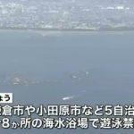 サメ確認受け 神奈川9海水浴場で遊泳禁止 NNN (2015/08/15)21時45分