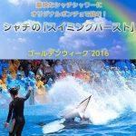 シャチの幅1.5mの巨大な尾ビレで観客席に水を浴びせかける「スイミングバースト」2016年4月29日~5月5日期間限定で開催