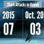 10歳の少年がサメに襲われ重傷、被害は今年7件目 シャークアタック ハワイ 2015年10月29日