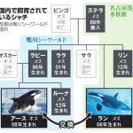 千葉)シャチ繁殖へトレード 国内飼育、オスは1頭のみ 朝日新聞より 2016年1月26日