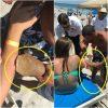 噛んだサメごと緊急搬送 アメリカ フロリダ州