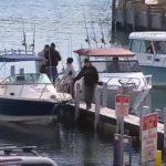 またも・・・サメ襲撃でスキューバダイビングをしていた女性死亡 オーストラリア