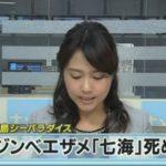 ジンベエザメ「七海」の件 ニュース映像