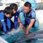 小学校5・6年生対象 水族館でトレーナーの職業体験にチャレンジ 鴨川シーワールド