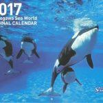 2017年版 鴨川シーワールド オリジナルカレンダーについて