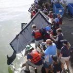 救出されたイルカ 意外と雑に放流される アメリカ