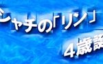 シャチのリン 誕生日のイベント情報 名古屋港水族館