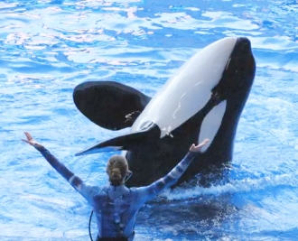 seaworld-side-by-side