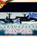 夜のシャチパフォーマンスなど 鴨川シーワールド 2016クリスマス