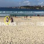 不死身のヒュー・ジャックマンもサメ警報で帰宅する オーストラリア